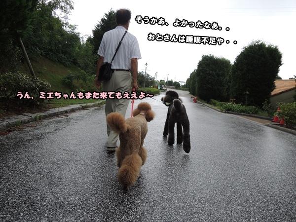 DSCN643120140821.jpg