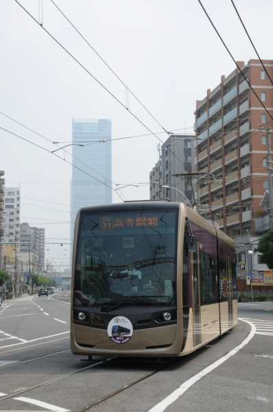 DSC_6996.jpg