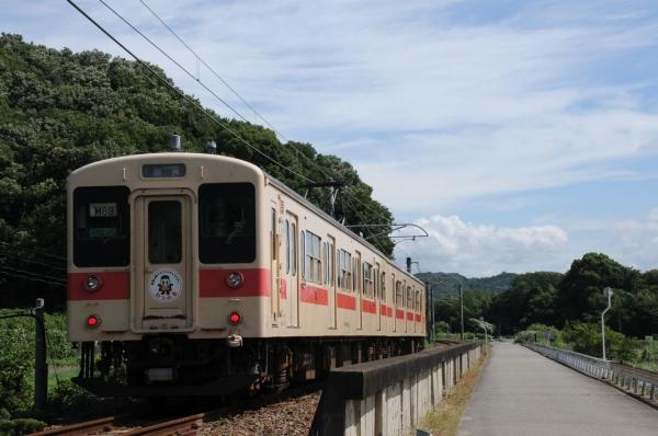 DSC_7296.jpg