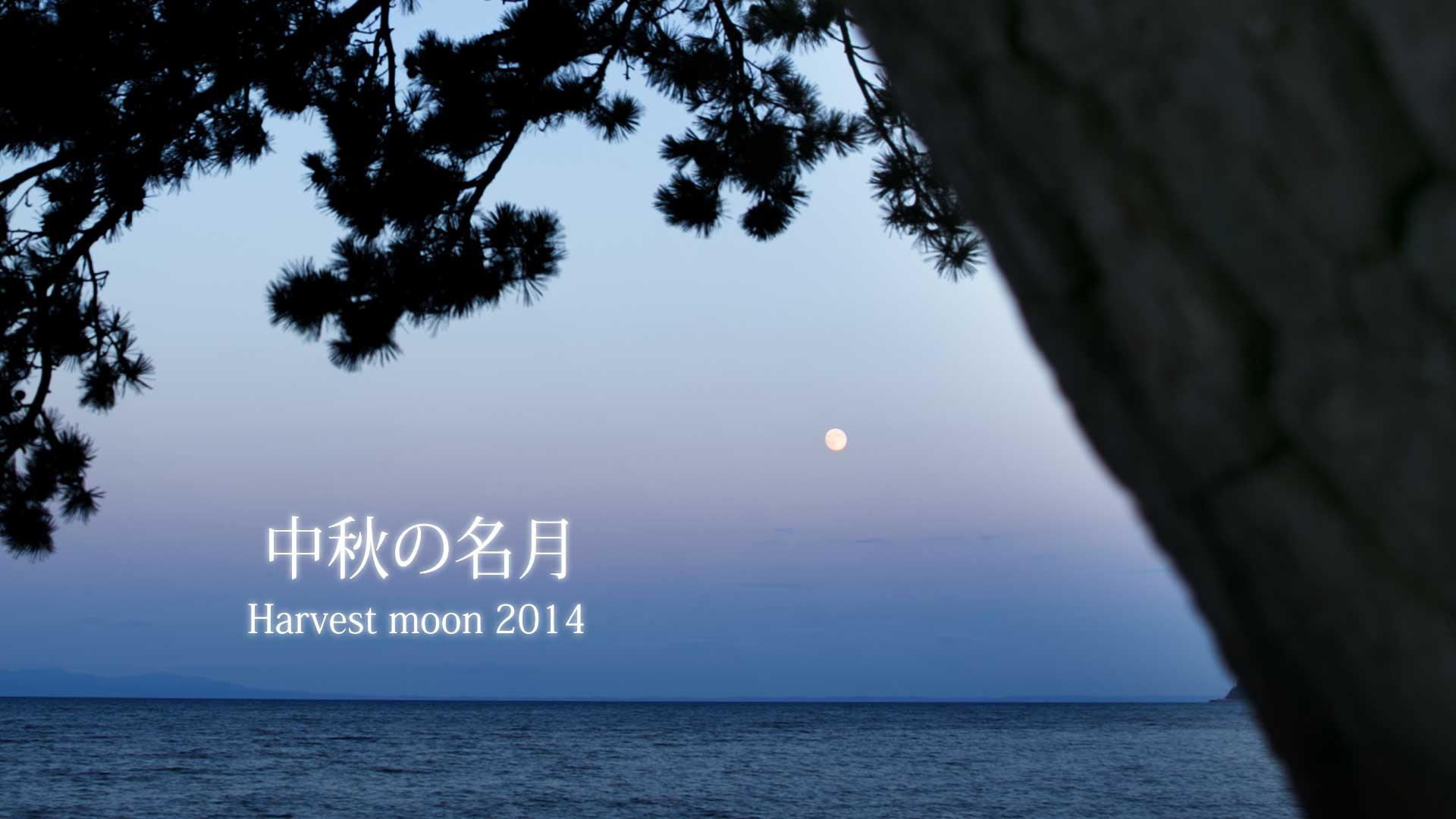 中秋の名月-(0-00-28-20)