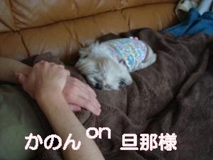 20140401UP (5)