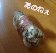 20140401UP (8)