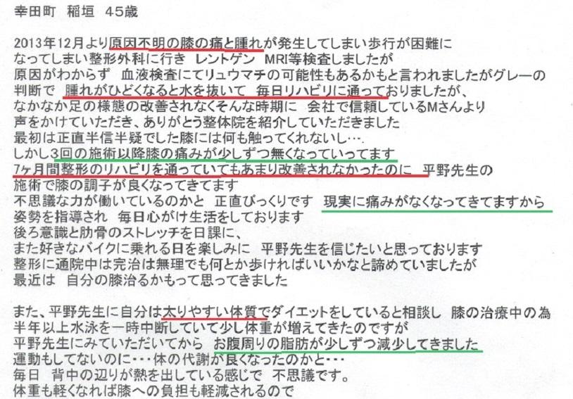 稲垣 膝 - コピー