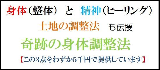 a0055_000491 - コピー - コピー (4) - コピー - コピー