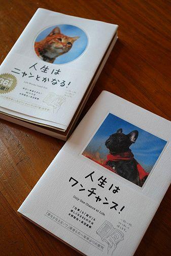 日本酒パウンド④