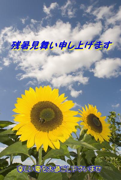 24_201408121402450c5.jpg