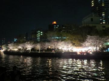 デッキからの夜桜