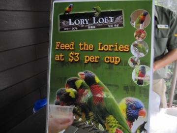 ・ローリーロフトは餌があげられます。3$