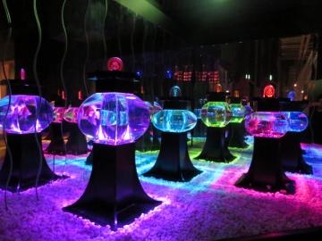 (ボンボリウム)雪洞。アクアリウムを照明に見立てた作品