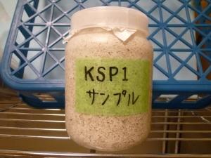 KSP1サンプル