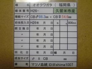 s14-5番購入カード