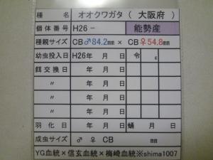 s14年能勢1番購入カード