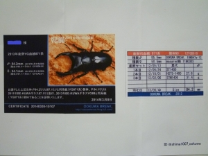 s14年能勢1番購入証明