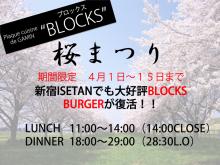 BLOCKS桜祭り