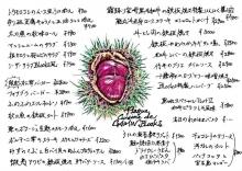 【BLOCKS】20140917_1