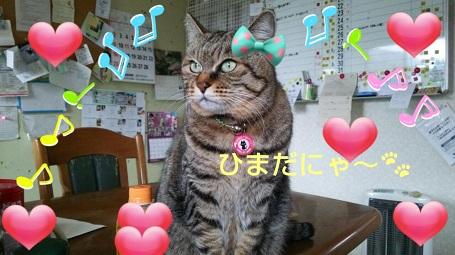石川さんブログ⑥