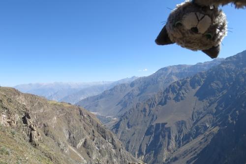 あずこ、ペルーに行く51