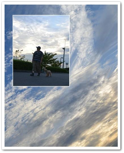 2014-8-28-8.jpg