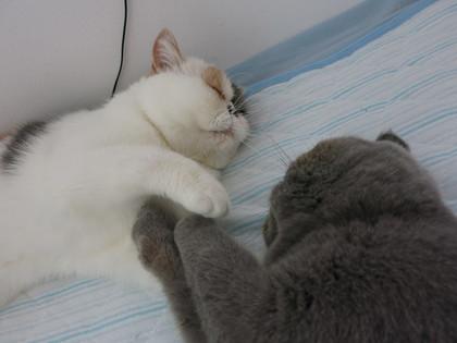 寝たふり、、、(笑)