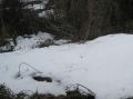 谷戸の残雪