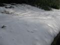 谷戸の雪は健在