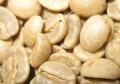 キリマンジャロ・キボー・AA生豆
