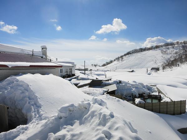 湯元温泉 国民宿舎雪秩父 チセヌプリスキー場