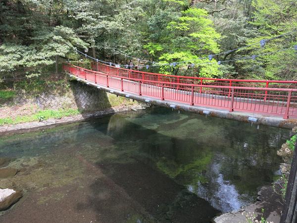 菊池渓谷 釣り橋