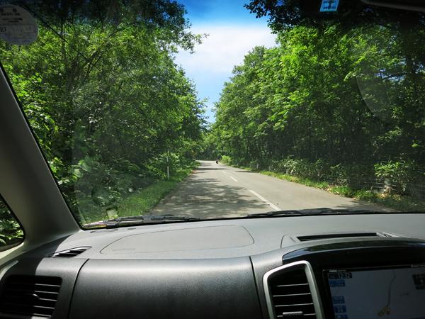 旭川市21世紀の森 ふれあい広場 続く道