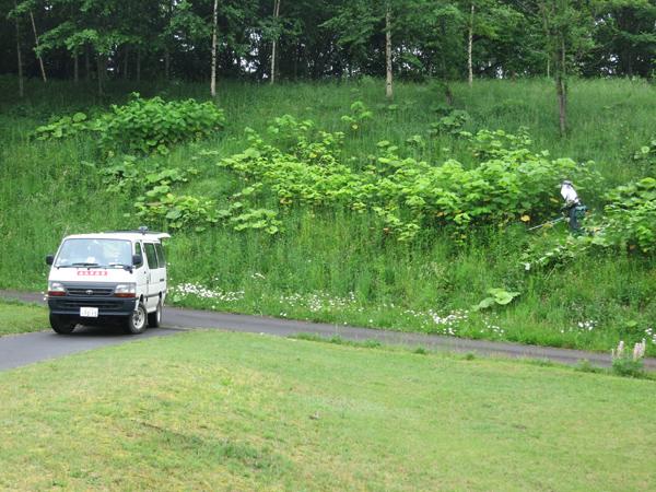 旭川市21世紀の森 ふれあい広場 草刈り