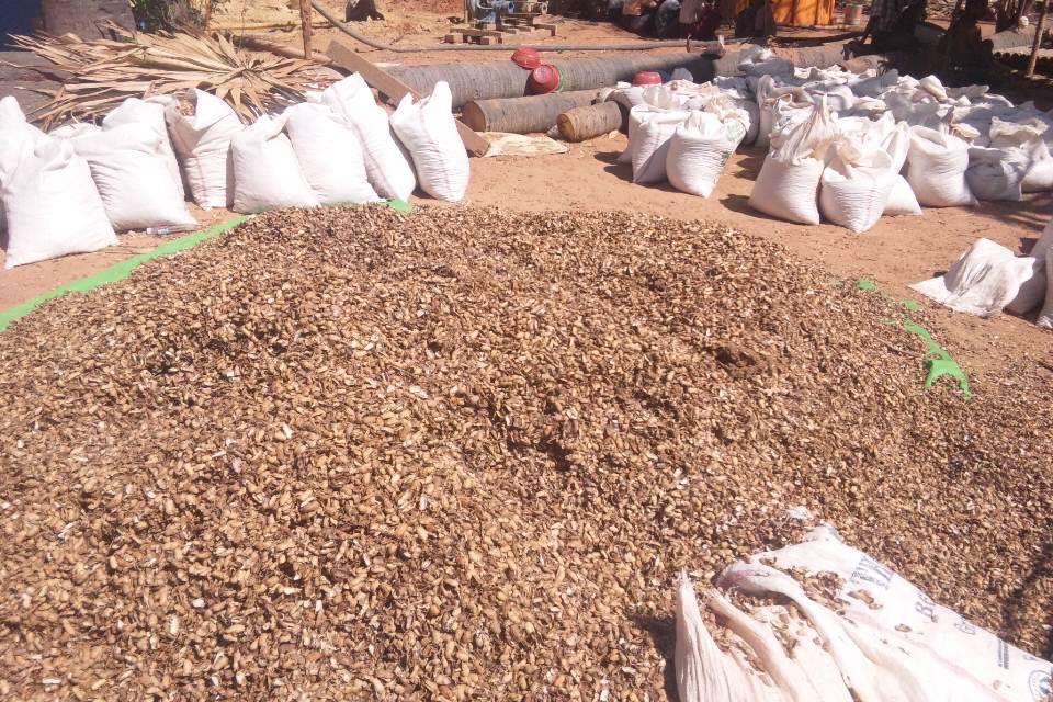 投入された大量のピーナッツの殻