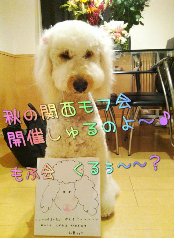 image1_20141006214548eb9.jpg