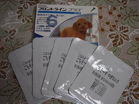 2014103ご支援