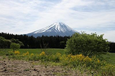 yamanashi_20140523_09.jpg