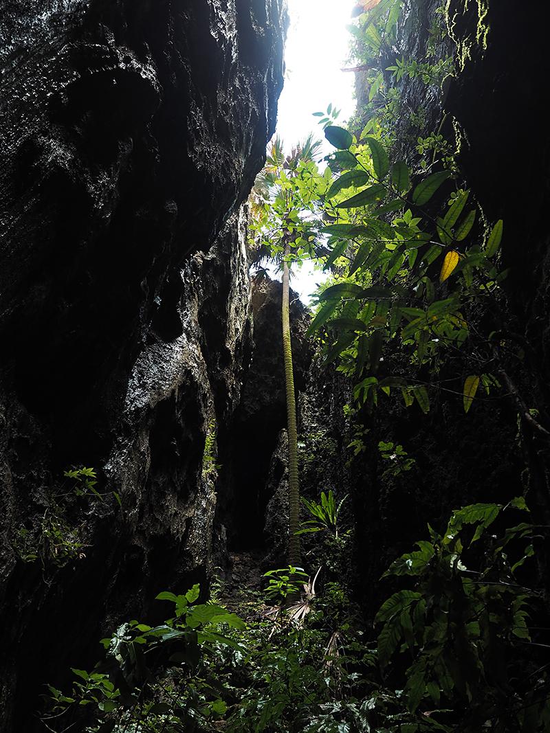 バリバリ岩