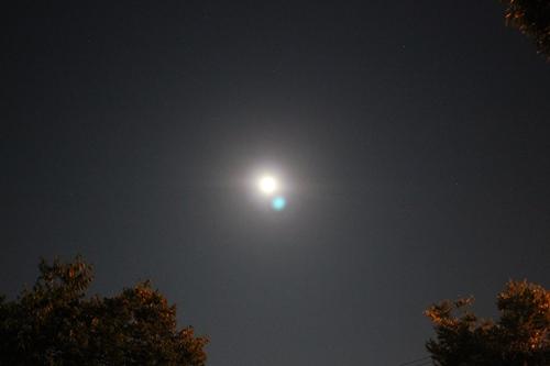 moon-20140908.jpg