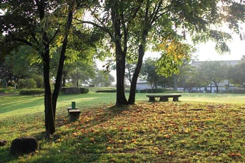 park-20140824.jpg