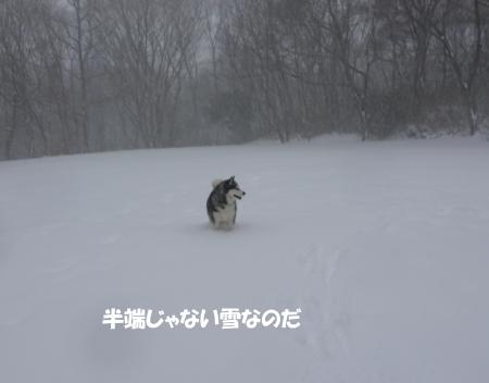 20140209_1.jpg
