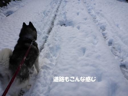 20140209_8.jpg