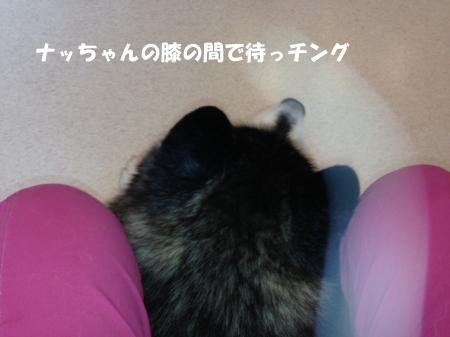 20140820_3.jpg