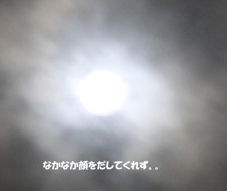 20140909_2.jpg