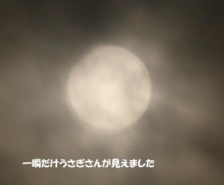 20140909_3.jpg