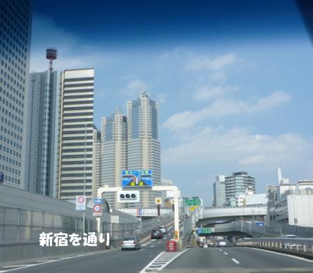20140924_4.jpg