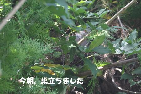 20140930_2.jpg