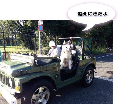 20140985_3.jpg