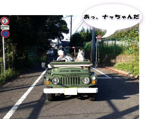 20140985_6.jpg