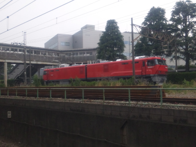 EH800-1