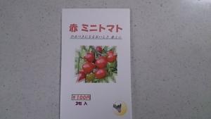 2014-03-05 赤ミニトマト