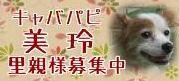 mirei_20141001205749530.jpg