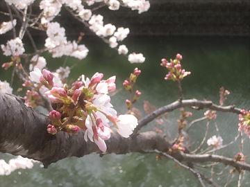 april2014(2).jpg
